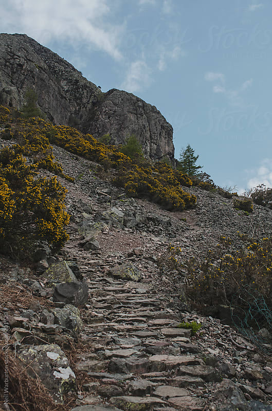Mountain Path by Neil Warburton for Stocksy United