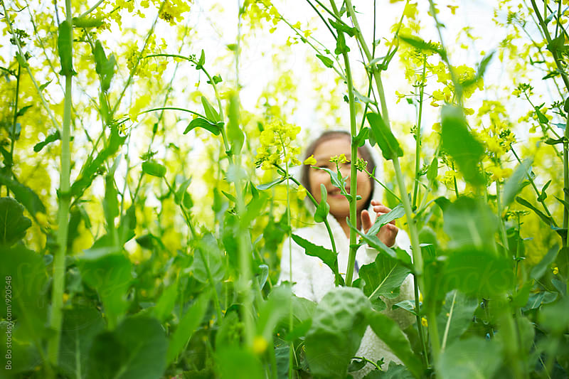 little asian girl in the rape flower field by Bo Bo for Stocksy United