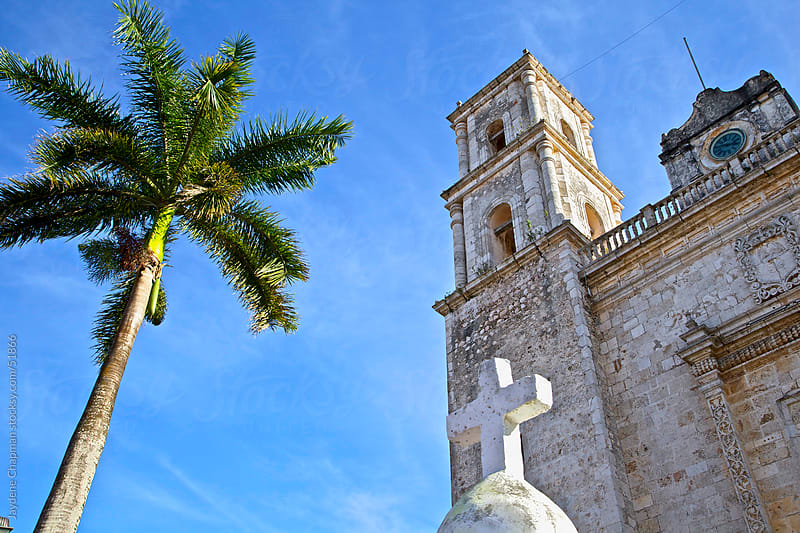 Looking up to a palm tree in front of a church cathedral tower, Mexico by Jaydene Chapman for Stocksy United