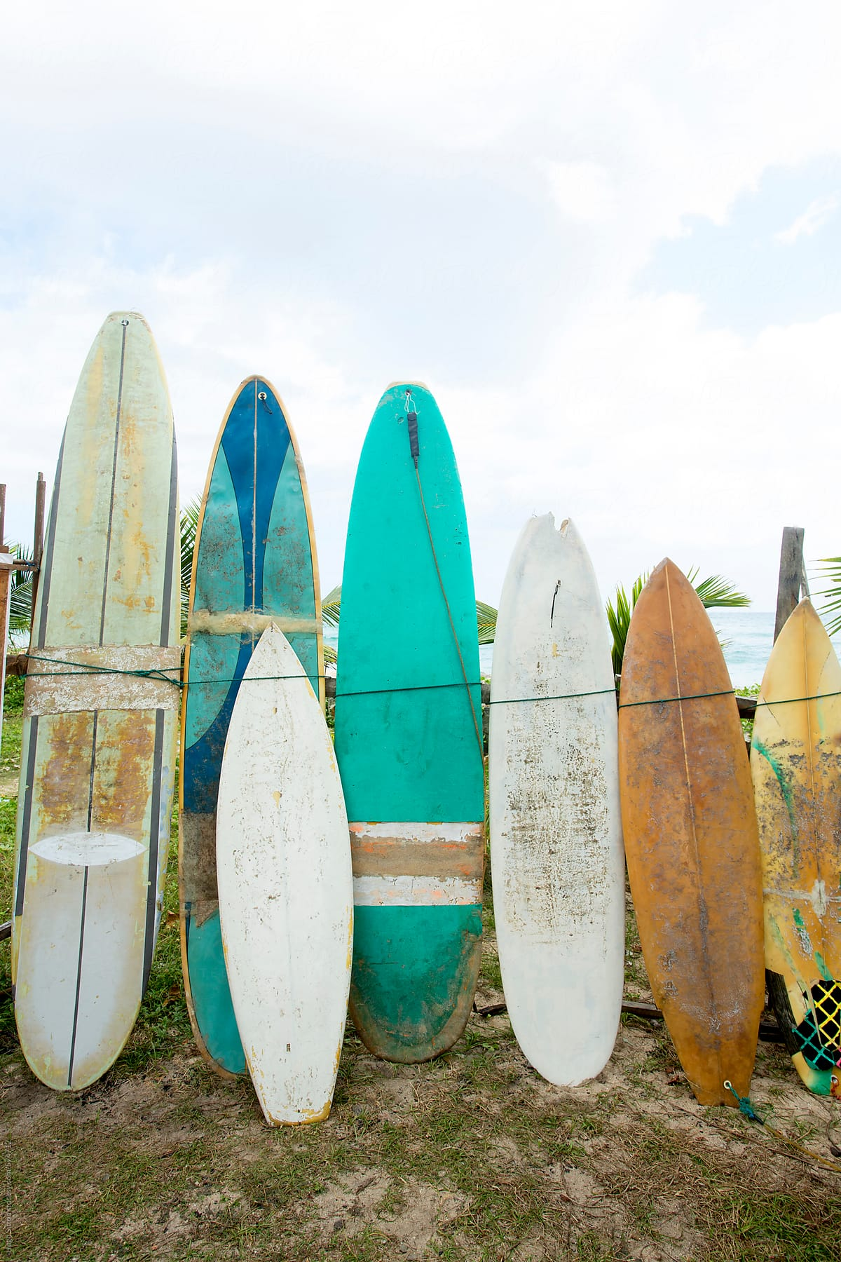 Selection Of Colourful Old Surfboards Sri Lanka Stocksy United