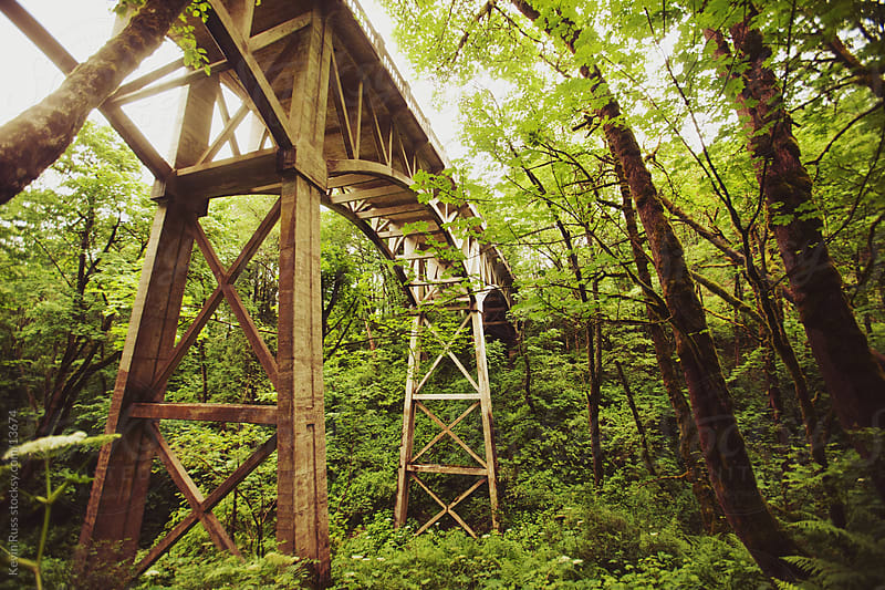 Forest Bridge by Kevin Russ for Stocksy United