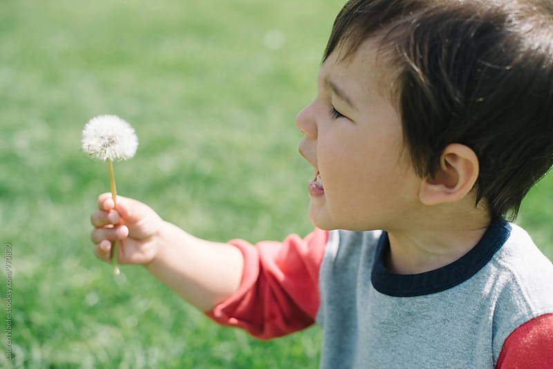 Excited toddler looking at dandelion by Lauren Naefe for Stocksy United