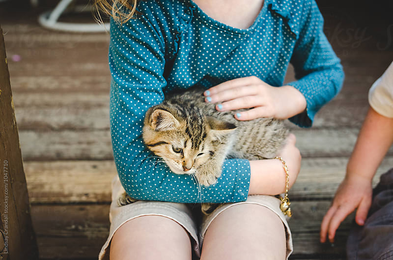 Child holding and petting a kitten by Lindsay Crandall for Stocksy United