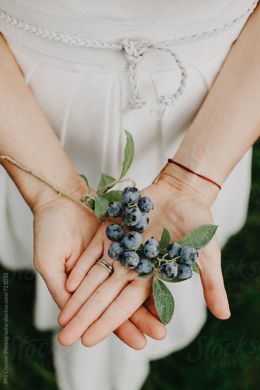 Girl in dress holding fresh picked blueberries by Phil Chester Photography for Stocksy United