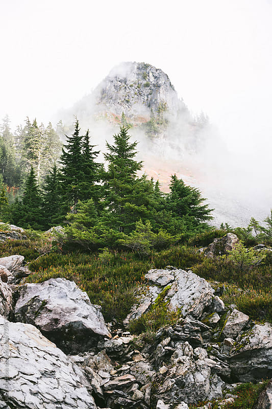 Towering Mountain Shrouded In Fog Above Subalpine Fir Trees And Boulders by Luke Mattson for Stocksy United