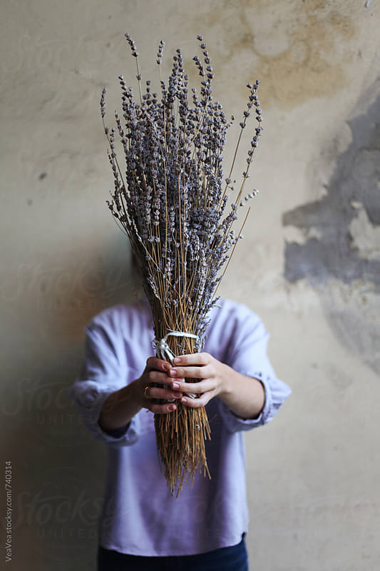 Woman holding a bouquet of lavender flowers in front of her face by Marija Mandic for Stocksy United