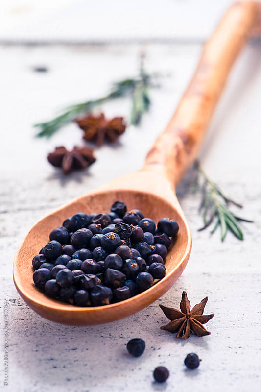 Whole juniper berries, rosemary and star anise by Rhonda Adkins for Stocksy United