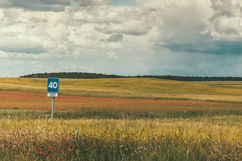 signal 40 on rural road by Javier Pardina for Stocksy United