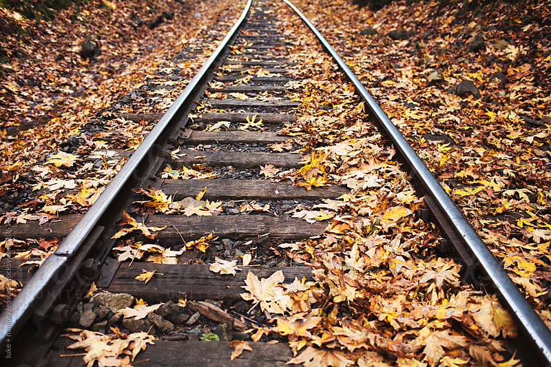 Train Tracks in the Fall by luke + mallory leasure for Stocksy United