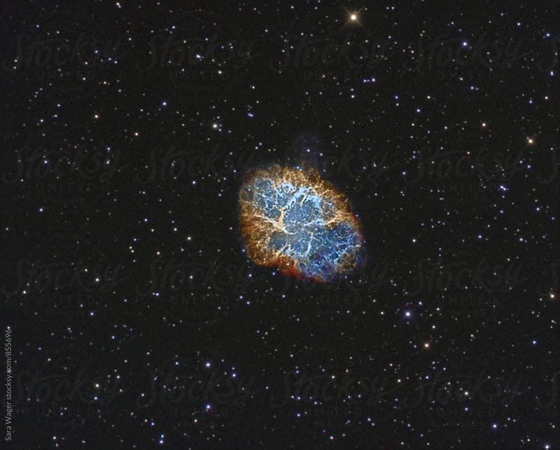 The Crab nebula by Sara Wager for Stocksy United