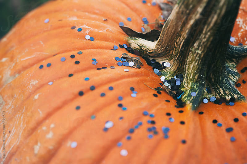 Black Glitter Sprinkled On Pumpkin by Sean Locke for Stocksy United