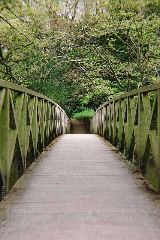 Small bridge by Gabriel Tichy for Stocksy United