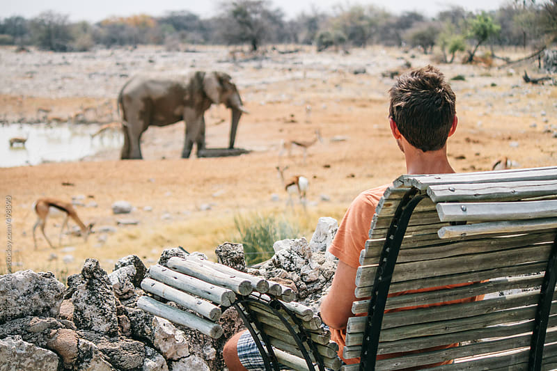 Young man looking at wild animals on a water hole on a safari sitting on a bench. Etosha National Park, Namibia by Alejandro Moreno de Carlos for Stocksy United