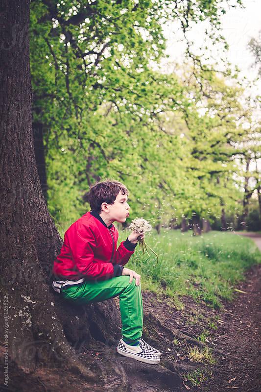 Boy blowing bunch of dandelions under a tree by Angela Lumsden for Stocksy United