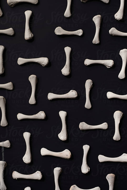 Bones arranged on black background. by Marko Milanovic for Stocksy United