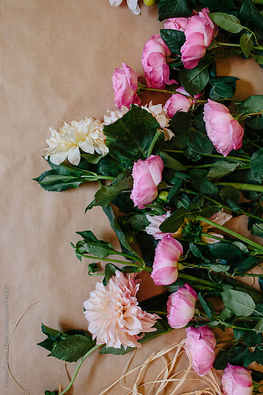blush delilahs and pink garden roses  by Kristen Curette Hines for Stocksy United