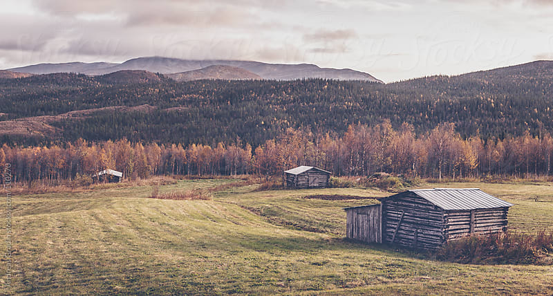 rural landscape by Andreas Gradin for Stocksy United