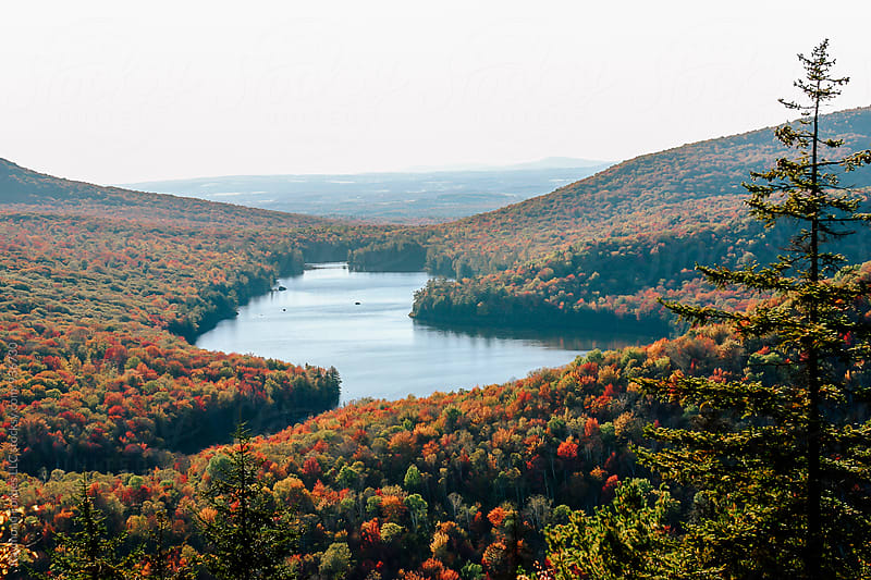Vermont Lake in Autumn  by Raymond Forbes LLC for Stocksy United