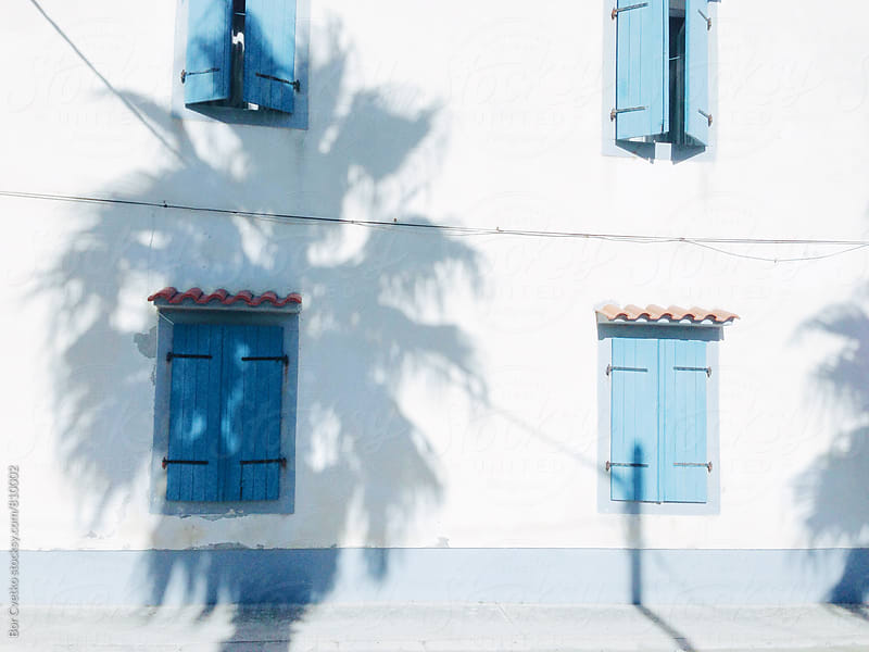 Palm shadow on blue windows by Bor Cvetko for Stocksy United