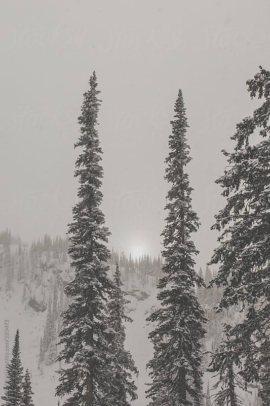 Mountain Landscape by Luke Gram for Stocksy United