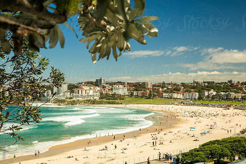 Bondi Beach Summertime by Odyssey Stock for Stocksy United
