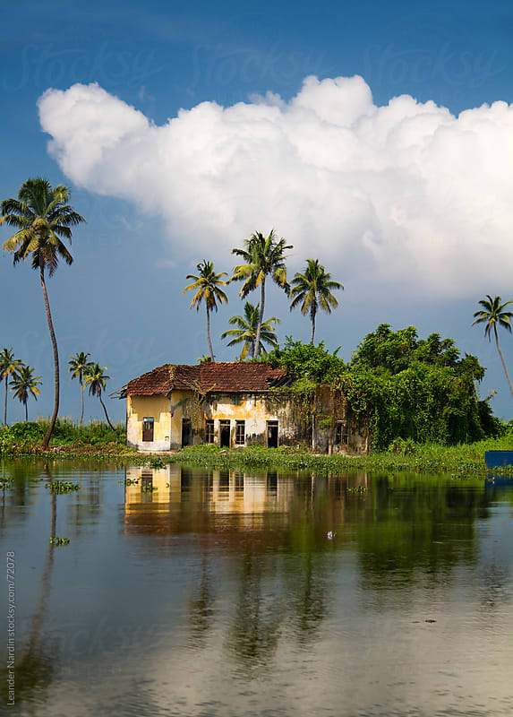 old house with palmtrees by Leander Nardin for Stocksy United