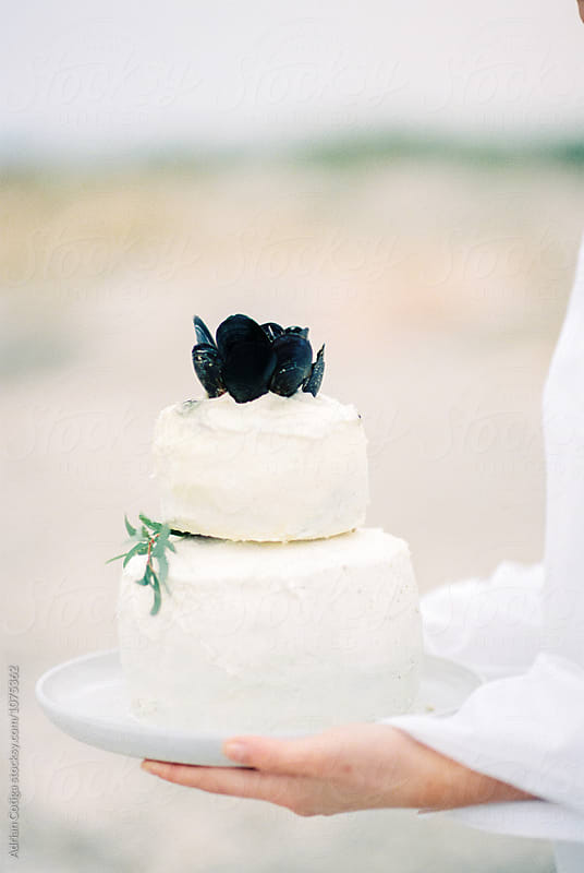 White cake decorated with olive branch by Adrian Cotiga for Stocksy United