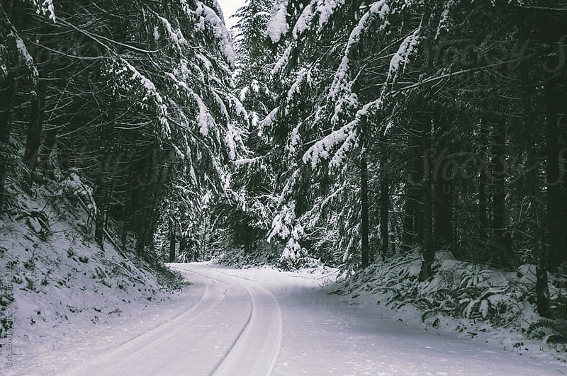 Snowy Tire Tracks by Eric Bowley for Stocksy United