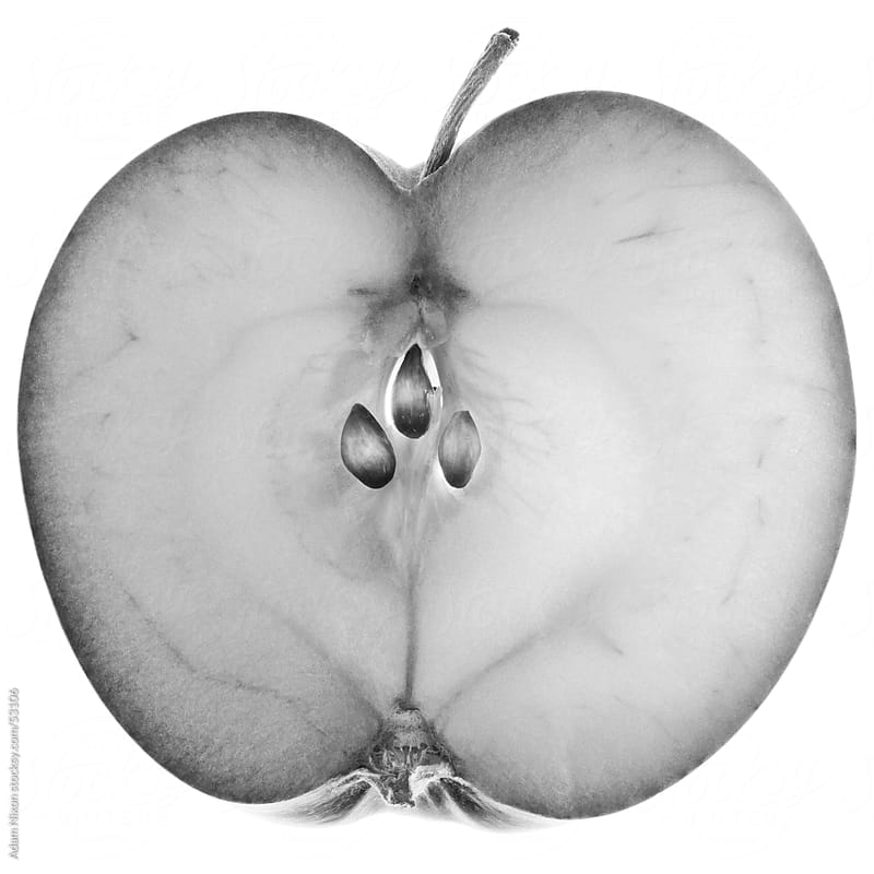 Apple Slice in Black & White by Adam Nixon for Stocksy United