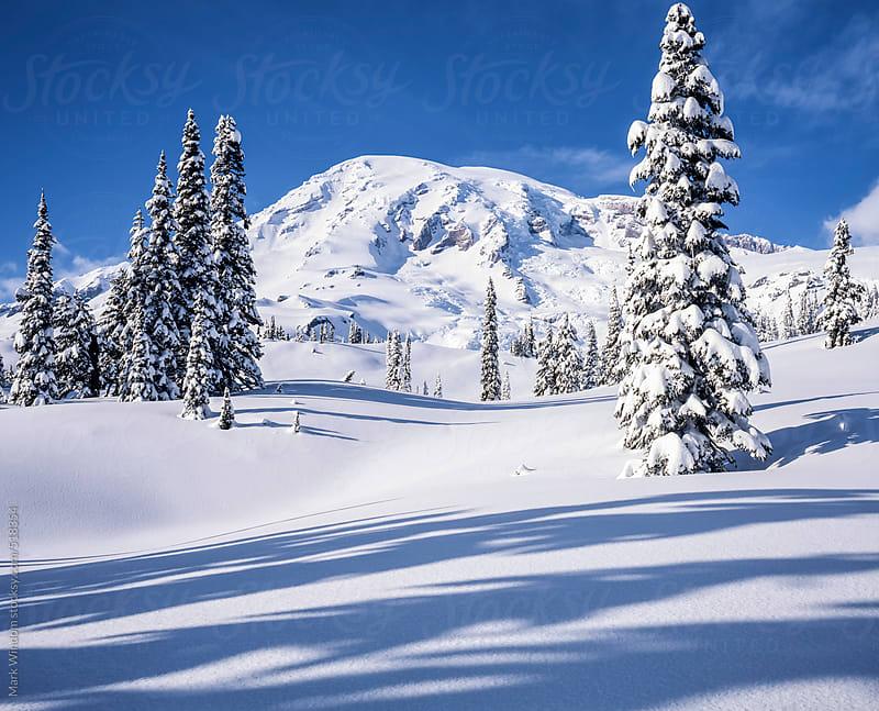 Mount Rainier following a fresh winter snowfall by Mark Windom for Stocksy United