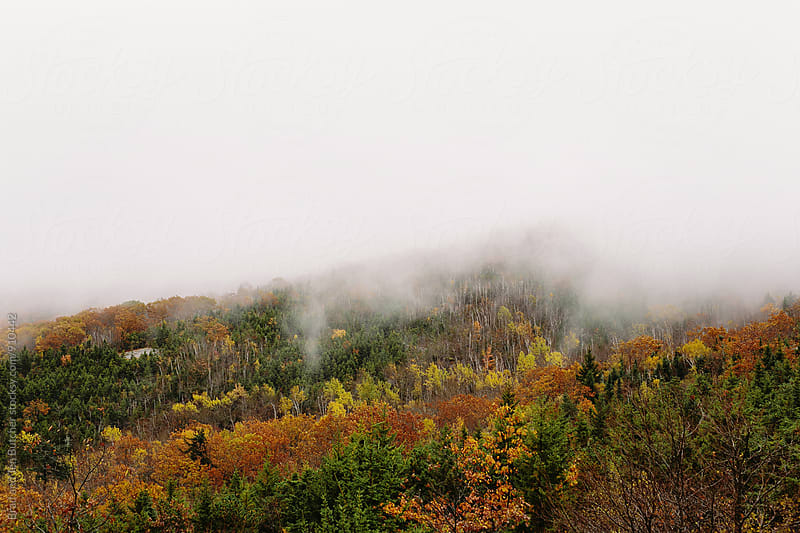 Fog Rolling Over Mountain by Brad and Jen Butcher for Stocksy United