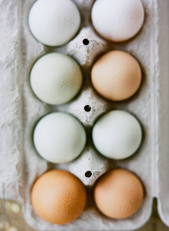 Free-range, organic chicken eggs in carton by Ali Harper for Stocksy United