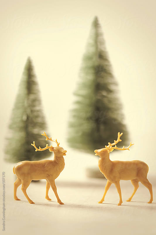 Miniature reindeer with little trees for holiday decorating by Sandra Cunningham for Stocksy United