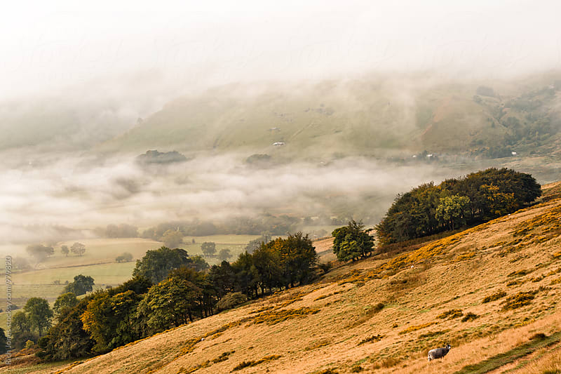 Hope Valley in the mist, Peak District by Rich Jones for Stocksy United