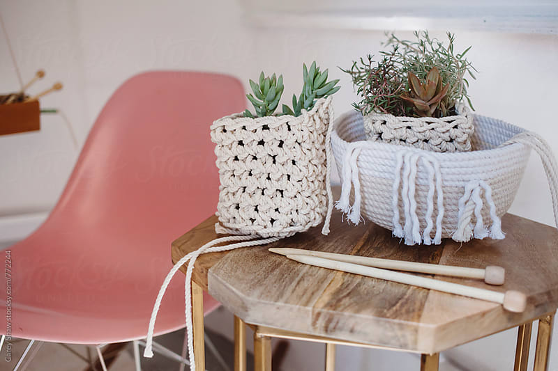 Modern handmade decor and plants by Carey Shaw for Stocksy United