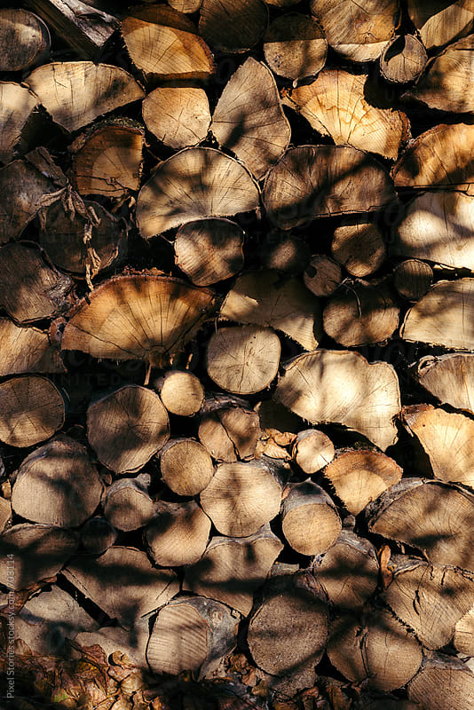 Firewood by Pixel Stories for Stocksy United