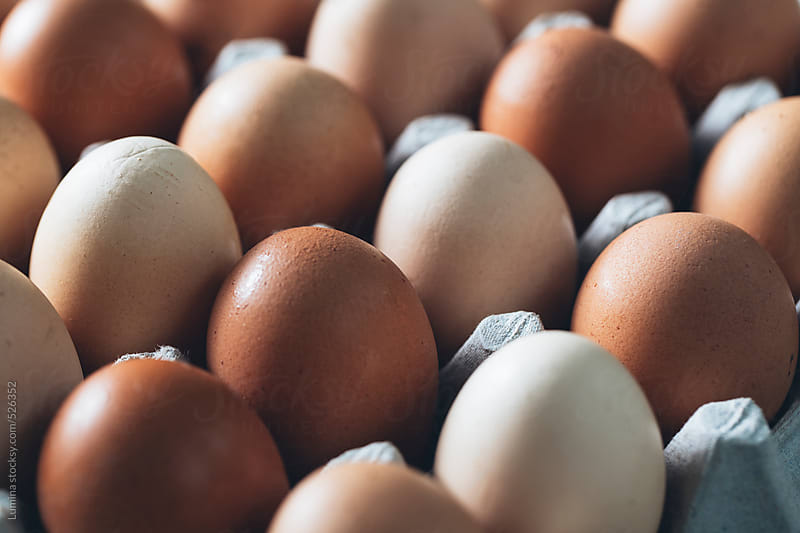 Eggs by Lumina for Stocksy United
