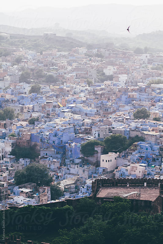 The blue city at dusk (Jodhpur, Rajasthan) by Maresa Smith for Stocksy United
