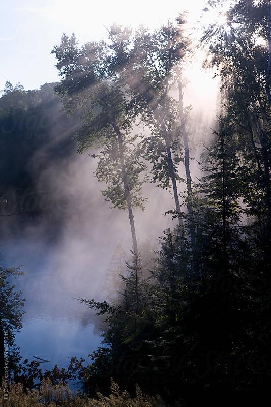 Morning Mist by Jill Chen for Stocksy United