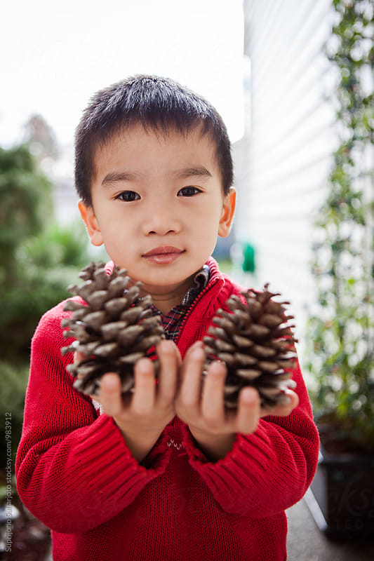 Happy Asian boy holding pinecones by Suprijono Suharjoto for Stocksy United