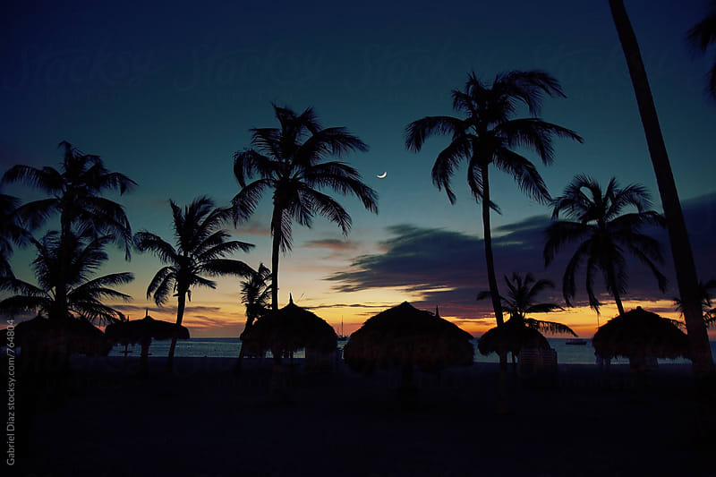 Sun setting behind the coconut palm trees by Gabriel Diaz for Stocksy United