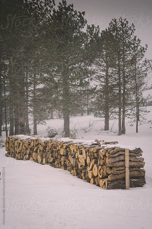 A long pile of firewood prepared for the winter by Aleksandra Jankovic for Stocksy United