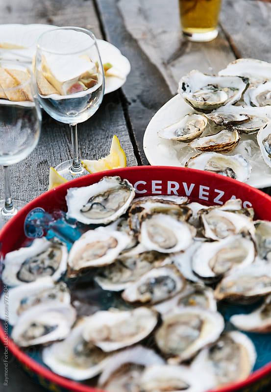 Oyster Party on Block Island by Raymond Forbes LLC for Stocksy United