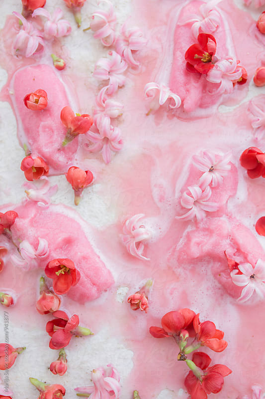 Pink melting popsicles with flower buds by Marija Savic for Stocksy United