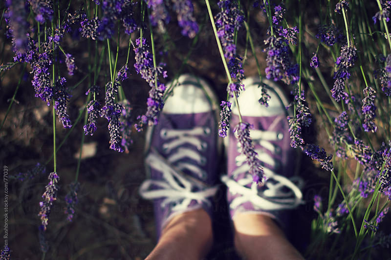 Purple sneakers and lavander by Helen Rushbrook for Stocksy United