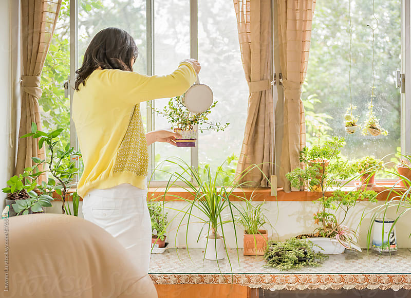 Woman watering plants indoors beside window by Lawren Lu for Stocksy United