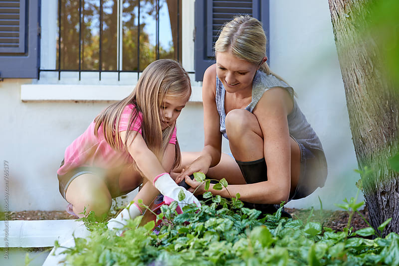 mother and daughter gardening by Daxiao Productions for Stocksy United