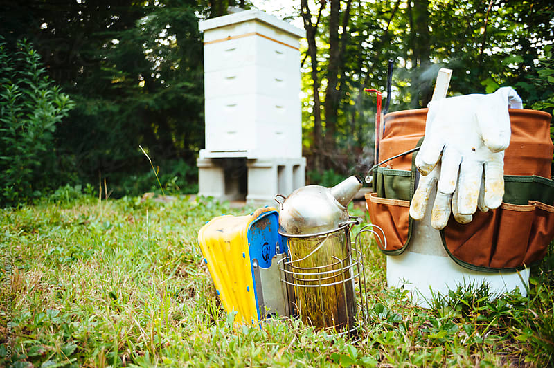 Beekeepers Tools by Rob Sylvan for Stocksy United