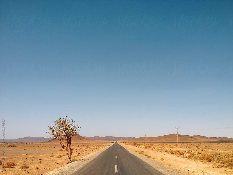 Straight desert road by Jordi Rulló for Stocksy United