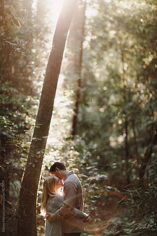 Couple Kissing in Redwoods by Sidney Morgan for Stocksy United